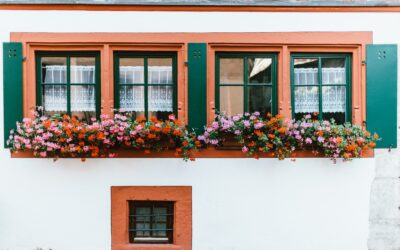 Sun Damage and Windows: What Homeowners Need to Know